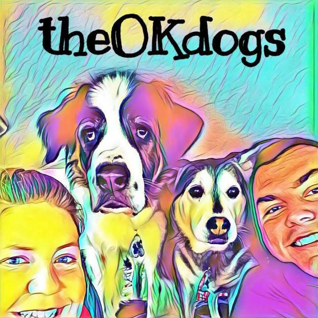 theokdogs