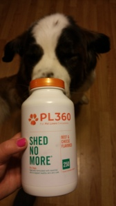 Ossian trying out PL360's Shed No More Supplement