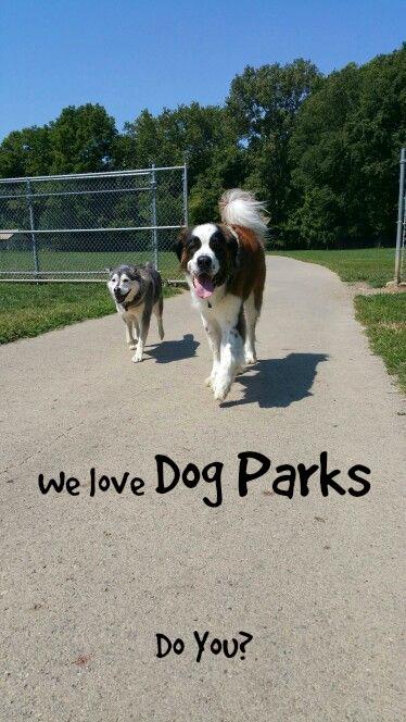 dogparkswe love