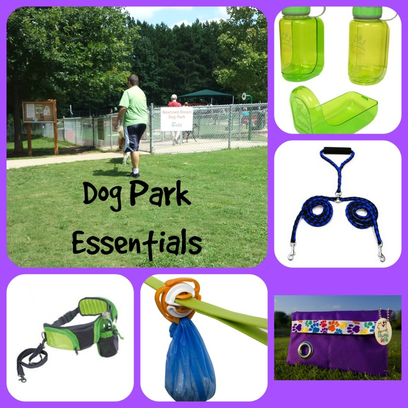 dog park essentials