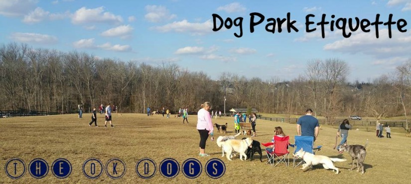 dog park etiquette