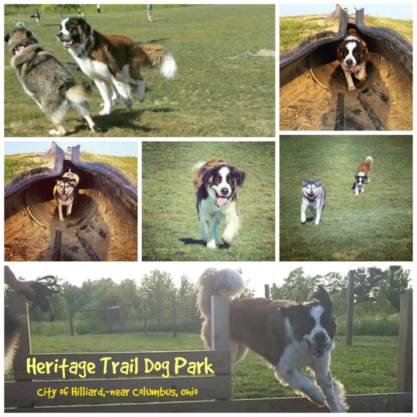 Heritage Trail Dog Park