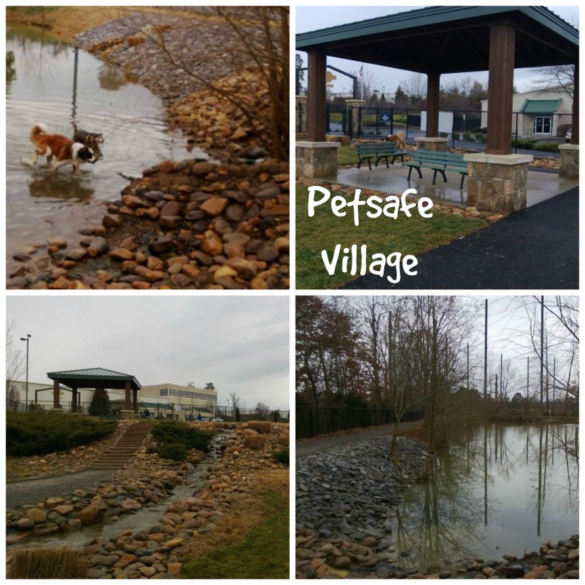 petsafevillage