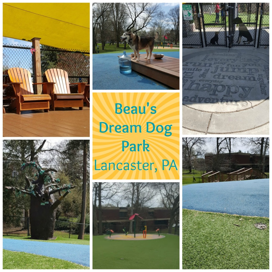 Beaus Dream Dog Park