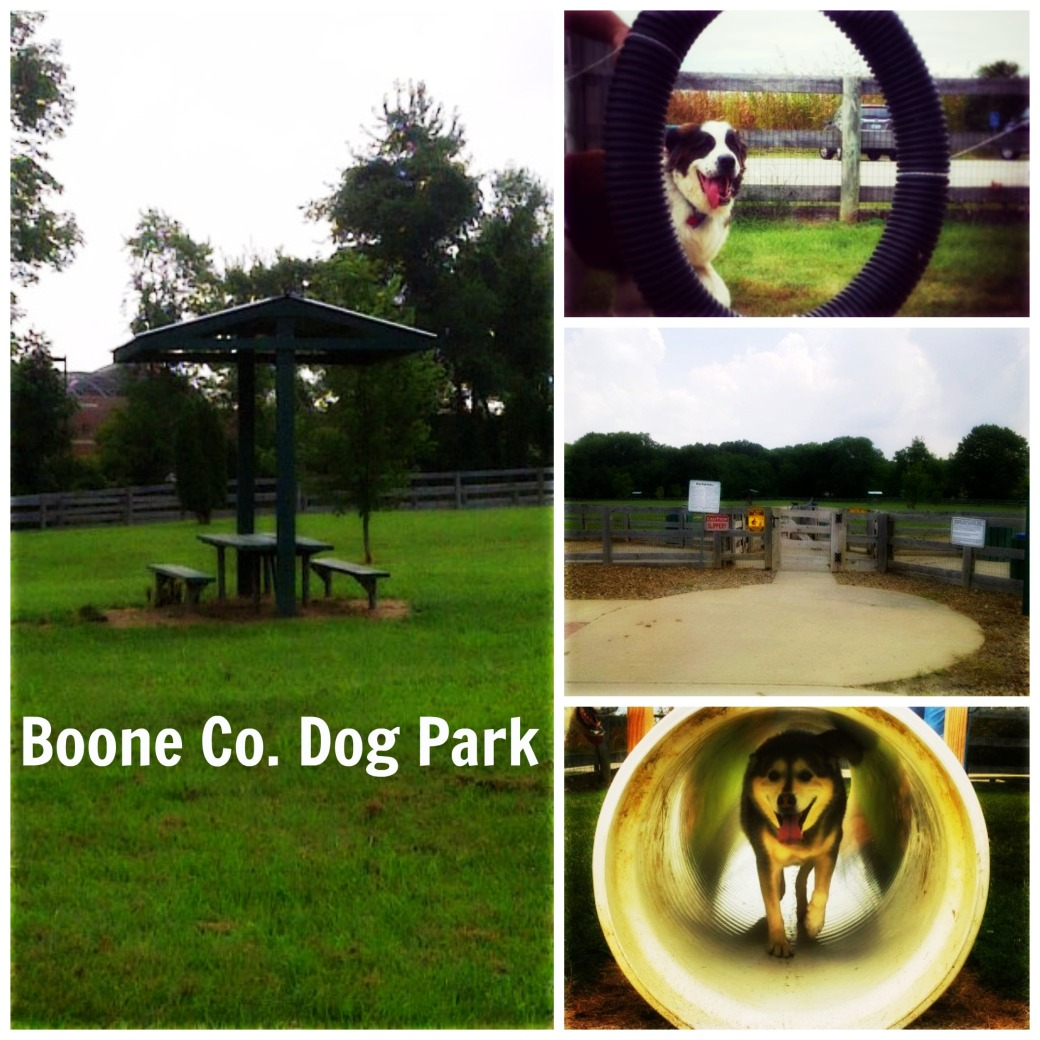 boone co dog park
