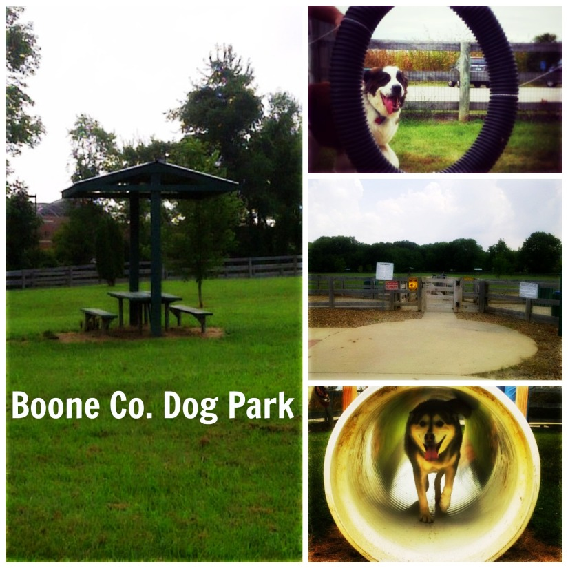 boone co dog park