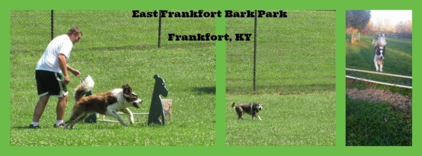 east frankfort bark park