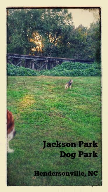Jefferson Do gPark NC