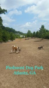 Piedmont DOg Park