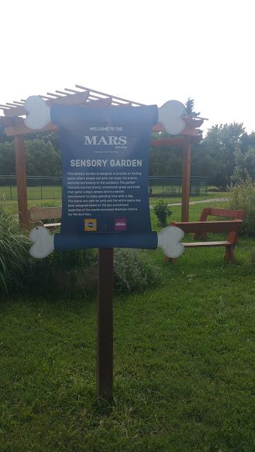 Sensory Garden for Dogs