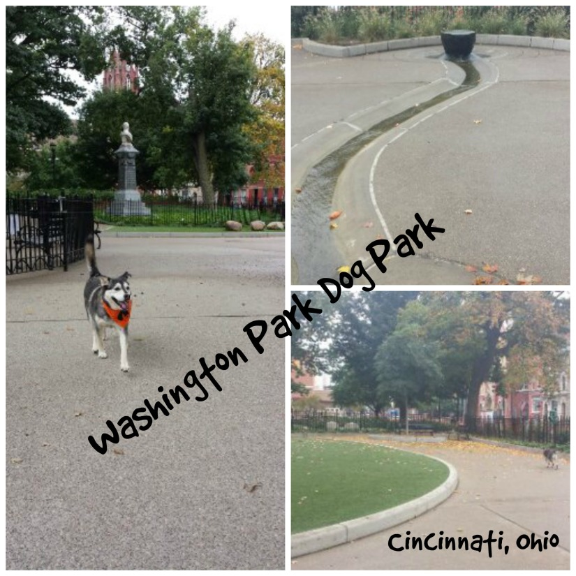 WashingtonPark.jpg