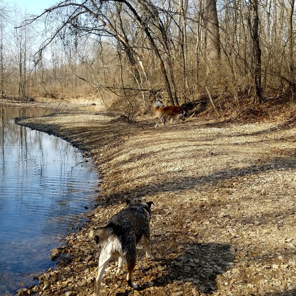 grindstone nature creek