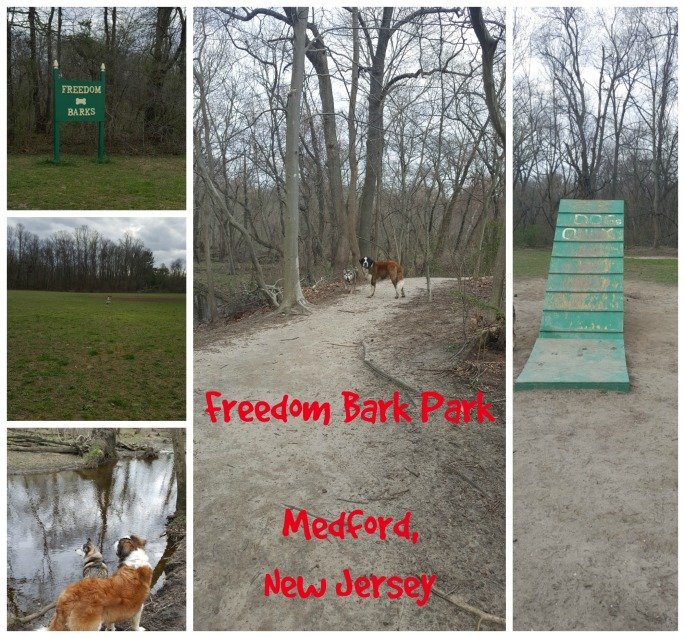 Freedom Bark Park